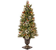 National Tree Company 4 Lit Wintry Pine Entrance Tree - H294406