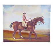 Linda Dano 16 x 20 Canvas Artwork - H200108