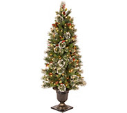 National Tree Company 5 Lit Wintry Pine Entrance Tree - H294408