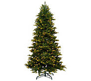 Bethlehem Lights 5 Noble Spruce w/ Swift Lock & Multi-Functions - H205409