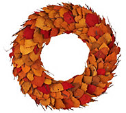 ED On Air 17 Dried Leaf Wreath with Twigs by Ellen DeGeneres - H206109