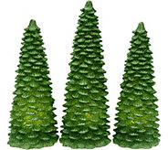 Set of 3 Illuminated Glitter Wax Trees by Valerie - H208709