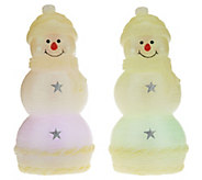 As Is Set of 2 Lightscapes Illuminated 8.5 Holiday Characters - H210309