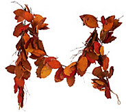 ED On Air 6 Dried Leaf Garland with Twigs by Ellen DeGeneres - H206110