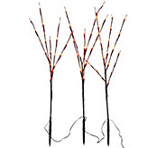 As Is Set of 3 Decorative LED Light Up Branches by Lori Greiner - H211210