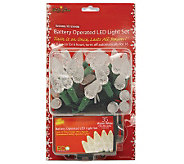 Battery Operated 35-Count C6 LED Light Set - Warm White - H361510