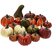 Set of 18 Pumpkin & Gourd Accents by Valerie - H206311