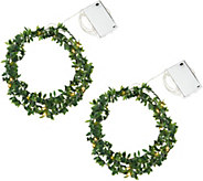 Kringle Express S/2 Boxwood Vine Fairy Micro Light Strands w/Timer - H212313