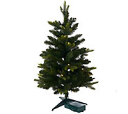 Bethlehem Lights Noble Spruce 30 Stake Tree - H206614
