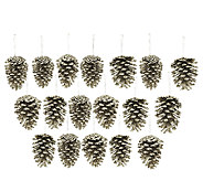 18-piece Glittered Pinecone Ornaments - H203615