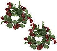 Set of 2 Glitter Holly Berry Candle Rings by Valerie - H208716