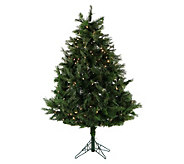 Fraser Hill Farm Prelit 5 Northern Cedar Teardrop Tree - H294816