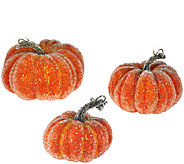 Set of 3 Decorative Beaded Pumpkins - H206117