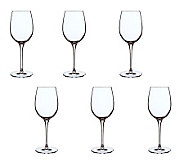 Luigi Bormioli 12.75-oz Vinoteque Fragrante Glasses - Set of 6 - H364917