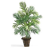 Areca Palm with Wicker Basket by Nearly Natural - H162318
