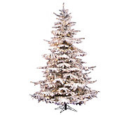 10 Flocked Sierra Pine PVC Tree with Clear Dura-Lit Lights - H362118