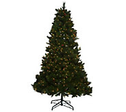 Bethlehem Lights 5 Fox Meadow Christmas Tree w/Instant Power - H205619