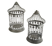 Set of 2 Decorative Metal Birdcages by Valerie - H199020