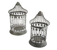 Set of 2 Decorative Metal Birdcages by Valerie - H199020