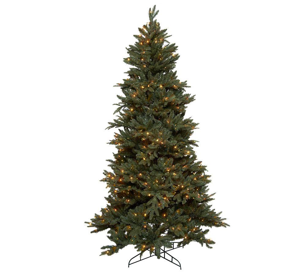 Bethlehem Lights 6.5' Frasier Fir Christmas Tree W/Instant