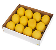 Set of 12 Decorative Lemons by Valerie - H202320
