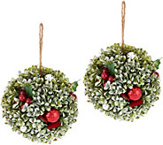 Set of (2) 7 Boxwood, Berry and Ornament Spheres by Valerie - H211520