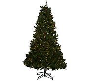 Bethlehem Lights 7.5 Fox Meadow Christmas Tree w/Instant Power - H205621