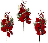 Set of 3 18 Oversized Poinsettia and Berry Picks - H208821