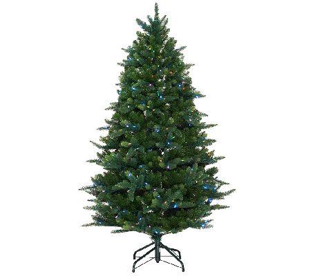 Cheap E D On Air 5 Douglas Fir Tree Review Christmas