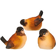 Candle Impressions S/3 Flameless Mini Birds with Timer - H204524