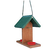 Go Green Oriole-Bluebird Feeder - H177326