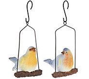Set of 2 Chirping Birds on Swings by Valerie - H204926