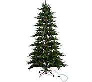 ED On Air Santas Best 7.5 Rustic Spruce Tree by Ellen DeGeneres - H209427