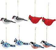 ED On Air Set of 8 Glass Bird Ornaments by Ellen DeGeneres - H207028