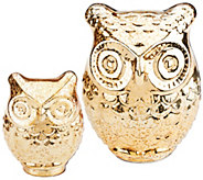 Home Reflections S/2 Prelit Mercury Glass Owls with Timers - H204133