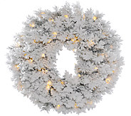 30 Flocked Alaskan Wreath by Vickerman - H286433