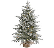 48 Frosted Sable Pine Tree with Clear Lights By Vickerman - H289833