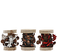 ED On Air S/3 Mini Wood Star Spool Garlands by Ellen DeGeneres - H207034