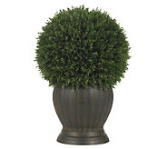 Cedar Ball Topiary Plant by Nearly Natural - H357334
