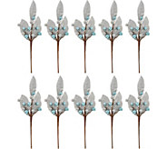 10-Piece Sparkling Glittered Berry & Leaf Picks - H209935
