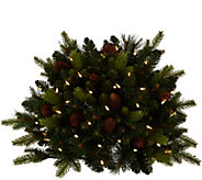 Bethlehem Lights Prelit Mixed Greens & Pinecones 24 Urn Filler - H210135