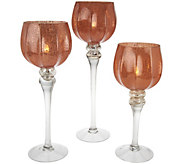 Set of 3 Frosted Glass Goblets with Tealights by Valerie - H210535