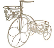 Indoor/Outdoor 18 Two Tier Tricycle Planter by Valerie - H210735