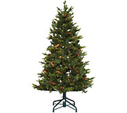 As Is Bethlehem Lights 5 Heritage Spruce Christmas Tree - H210835