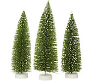 Set of 3 Graduated Bottlebrush Trees by Valerie - H212535