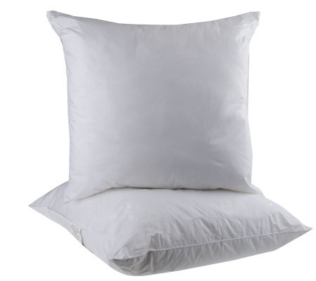 Qvc Decorative Pillows : Set of 2 28
