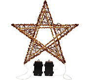 ED On Air S/2 Indoor/Outdoor Wicker Stars by Ellen DeGeneres - H209537
