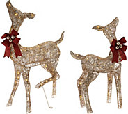 Indoor/Outdoor Prelit Crystal Splendor Doe and Fawn by Valerie - H212639