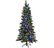Kringle Express 6.5 Glittery Pine Tree w/ LED Color Changing Lights - H205741