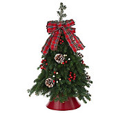 Fresh Balsam Tabletop Tree by Valerie Del Week 11/13 - H280941